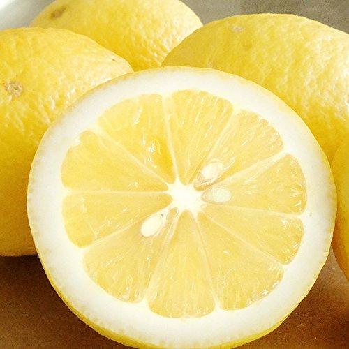 大長産・瀬戸内レモン( 減農薬 )ノーワックス ・ 防腐剤不使用 1kg