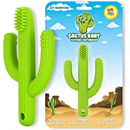 Cactus Baby Teething Toys Toothbrush   Self-Soothing Pain Relief Soft Silicone Teether Training Toothbrush for Babies, Toddlers, Infants, Boy and Girl   Natural Organic BPA Free   3+ Months   Green