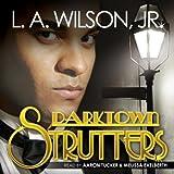 Bargain Audio Book - Darktown Strutters