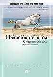 La liberación del alma (Advaita) (Spanish Edition)