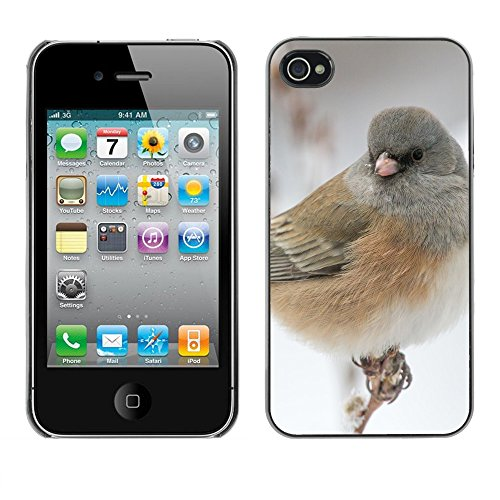 Premio Sottile Slim Cassa Custodia Case Cover Shell // F00012108 oiseau // Apple iPhone 4 4S 4G