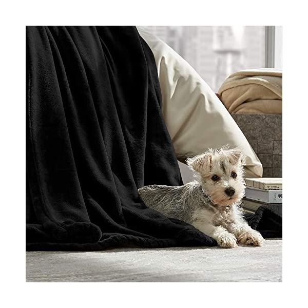 Bare Home Microplush Super Soft Blanket - shopemalls.com 8b41fc82c