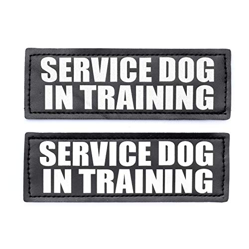"Service Dog in Training Patch with Hook Back and Reflective Lettering for Service Dog in Training Vests (Service Dog in Training, Large - 2"" x 6"")"