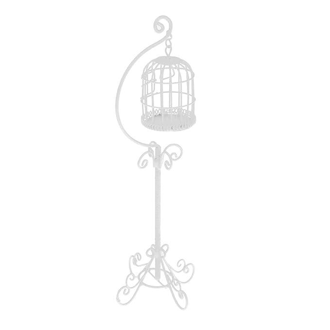 Amazon.es: D DOLITY Premium Mini Jaulas de Pájaros de Casas de ...