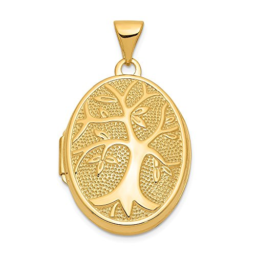 14k Yellow Gold 21x16mm Oval Tree Photo Pendant Charm Locket Chain Necklace That Holds Pictures Fine Jewelry Gifts For Women For Her