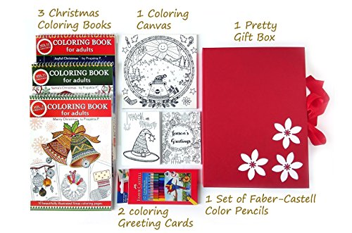 amazoncom christmas coloring gift set for adults 3 coloring books 2 coloring greeting cards 1 canvas 1 set of color pencils handmade - Coloring Christmas Cards 2