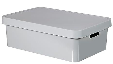 Curver Caja Infinity 30L con Tapa, Gris, 54.5x37x16 cm, 233996