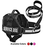Service Dog Vest With Hook and Loop Straps & Matching Service Dog Leash Set - Harnesses From XXS to XXL - Service Dog Harness Features Reflective Patch and Comfortable Mesh Design (Black, XS)
