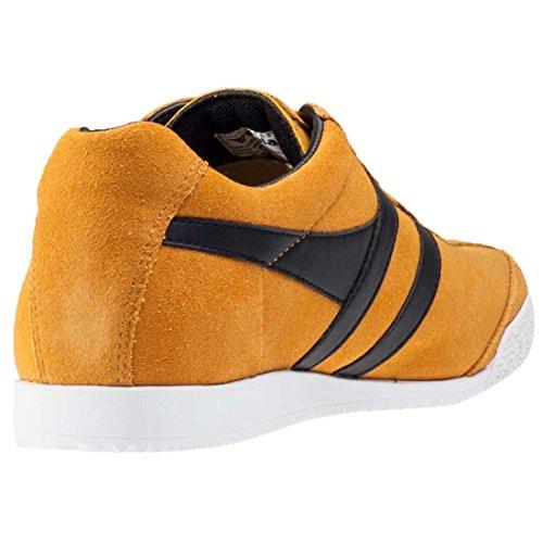 Yellow Fashion Harrier Black Men's Gola Sneaker qC1gnw47Ix