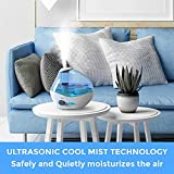 Ultrasonic Viral Support Humidifier for