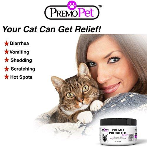 Buy cat probiotics
