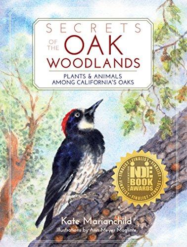 secrets-of-the-oak-woodlands-plants-and-animals-among-californias-oaks