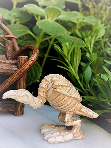 Dollhouse Mini Halloween Buzzard Skeleton Figurine Miniature Magic Scene Supplies Your Fairy Garden - Outdoor House Decor ()