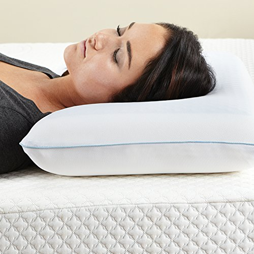 Classic Brands Reversible Cool Gel Memory Foam Pillow