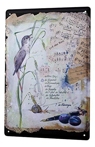 Dark Branches Tin Sign Arkadiusz Warminski Bird Nightingale Sheets Music Snail Pencil Fountain Pen Violin 8
