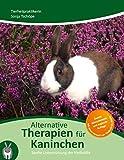 Alternative Therapien für Kaninchen: Sanfte Unterstützung der Heilkräfte