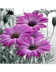 Borduurset borduurafbeeldingen kruissteek voorgedrukt - paarse zonnebloem -40X50 cm borduren borduurwerk borduurgaren Nieuwjaar Home Decor Creativiteit Cadeaus (11CT voorbedrukt canvas)