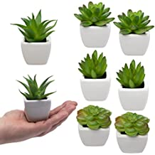 Set Of 8 Small Green Succulent Artificial House Plants Ceramic Pots Home Office