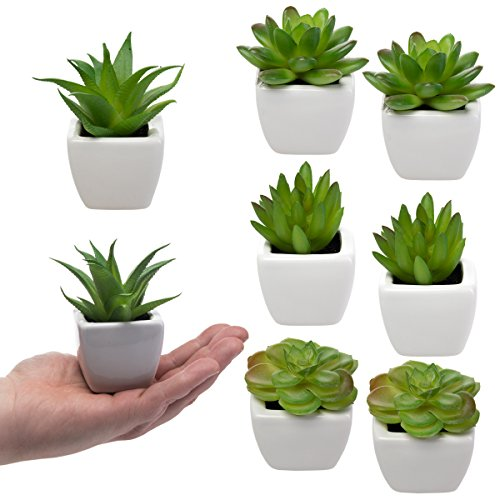 Set Of 8 Small Green Succulent Artificial House Plants Ceramic Pots Home Office by Home Trends