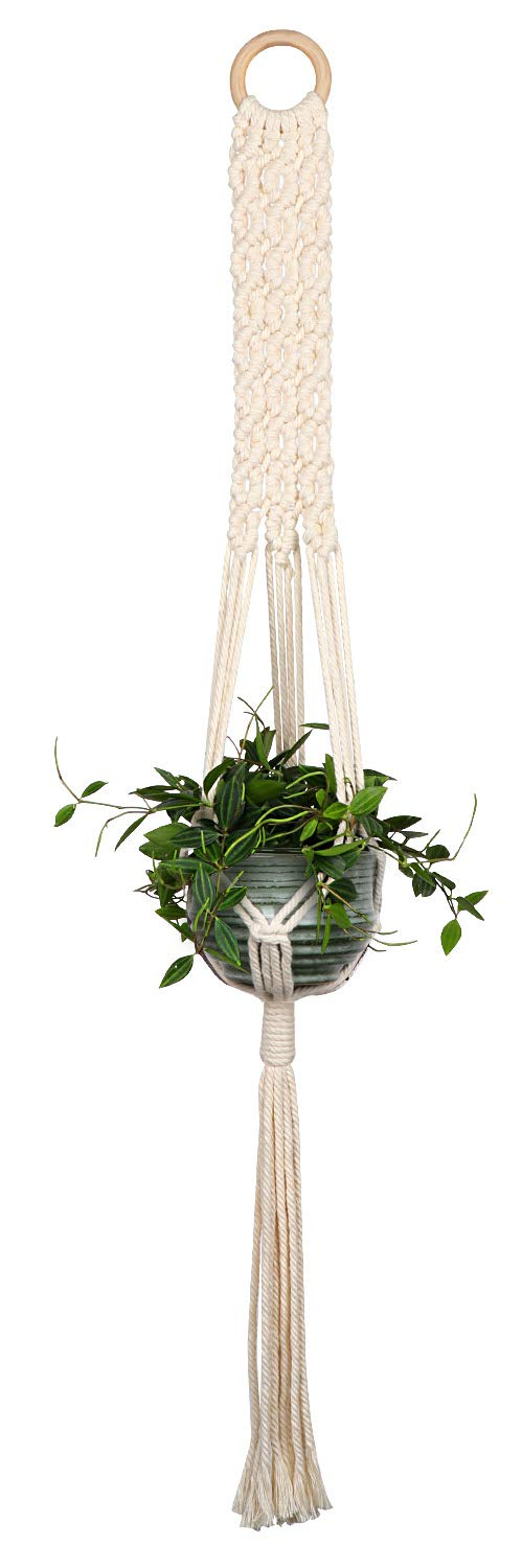 Decorative solution for toxic plants and pets