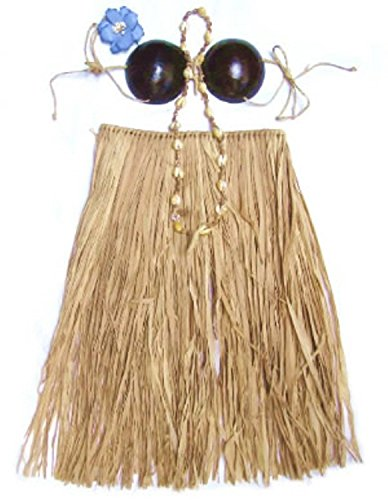 Grass Skirt Coconut Bra - Hawaiian Grass Skirt Set Coconut Bra Top Natural Teen