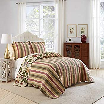 Image of 3 Piece Beatuiful Multi Colored Queen Bedspread Set, Classic Floral Soft Reversible Striped Bedding, Leafy Green Vines Fluttering Butterflies Dragonflies Forest Cottage Country Cream, Cotton Home and Kitchen