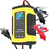 Niccen バッテリー充電器 6A/12V カーバッテリー バッテリーチャージャー 大電流 メンテナンス充電器 過電圧&過電流保護 自動車 バイク用充電器
