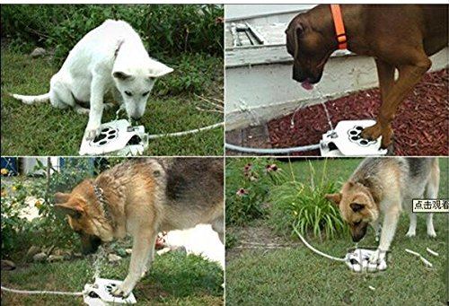 PetMiler  Outdoor Dog Water Fountain Your Pet From Drinking Stagnant Water
