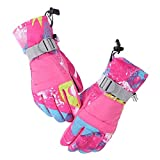 Ski Gloves, Azornic Touch Screen Waterproof Winter Skiing Gloves for Men, Women