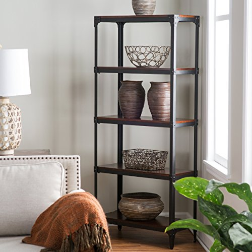 bookcase-of-belham-living-trenton-features-metal-frame-and-fixed-open-shelves-with-birch-veneers-esp