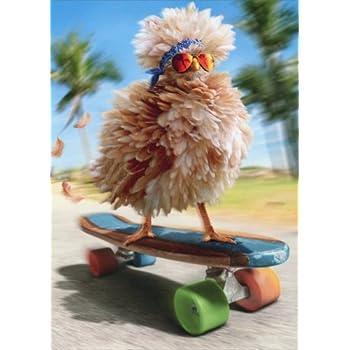 Amazon fancy chicken skateboarding avanti funny birthday fancy chicken skateboarding avanti funny birthday card bookmarktalkfo Choice Image