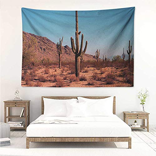 - alisos Saguaro,Cool Tapestries Grown Prominent Cacti with The Spines Hardy Plants Clear Sky Landscape Picture 72W x 54L Inch Living Room Bedroom Dorm Decor Brown Blue