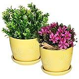 Set of 2 Yellow Sunburst Design Ceramic Flower Planter Pots / Decorative Plant Container with Saucer