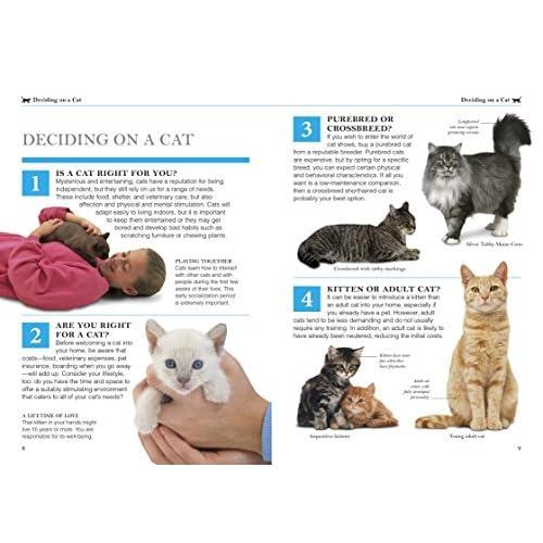 Cat Care Books
