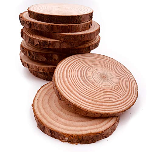 Unfinished Natural Wood Slices 10 Pcs 4-4.7 inch Wood Coaster Pieces Craft Wood kit Circles Crafts Christmas Ornaments DIY Crafts with Bark for Crafts Rustic Wedding Ornaments Birch Tree Slices Bass ()
