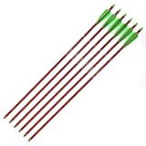"""Ruixunte 30"""" in 8.8mm Aluminum Arrows Plastic Fletching Spine 300 for Compound Bow"""