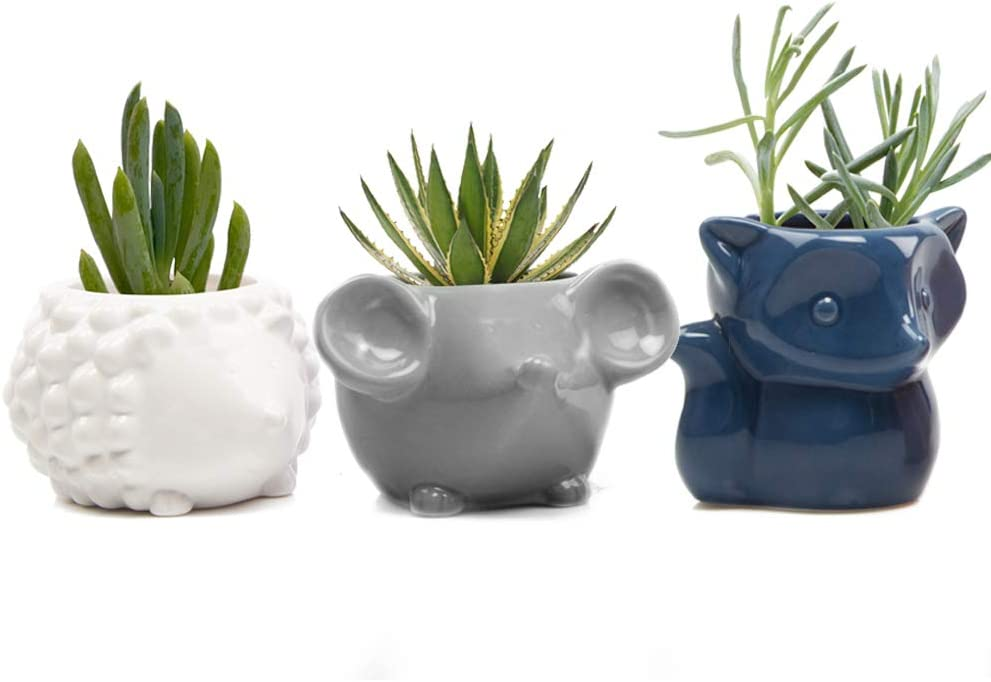 Chive – Set 3 Animal Pot Mouse, Hedgehog, Fox Shape Succulent Cactus Planter 3 Inch Ceramic Flower Plant Container, Indoor Outdoor Garden and Home Decor, White, Blue, Grey