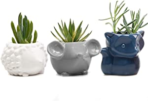 Chive - Set 3 Animal Pot Mouse, Hedgehog, Fox Shape Succulent Cactus Planter 3 Inch Ceramic Flower Plant Container, Indoor/Outdoor Garden and Home Decor,(White, Blue, Grey)