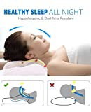 Noctura sleeping pillow latex contour for neck back - Best Reviews Guide