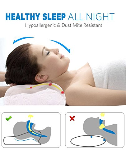 Noctura B16080004-04 Latex Contour Sleeping Pillow for Neck Back Shoulder Support Relief Pain - Natural Latex Contour Pillow