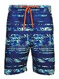 Laguna Mens Rainbow Palm Stripe Boardshort Swim Trunks Bathing Suits Blue Combo Large