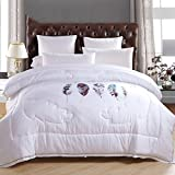 LU- Print Quilts Duvet Thicker Warm Queen 200X230cm ( Size : Queen-200230cm )