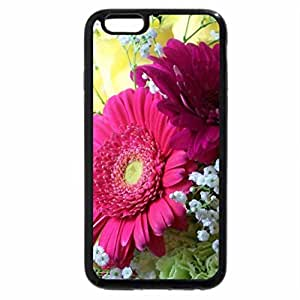 iPhone 6S Plus Case, iPhone 6 Plus Case, Lovely flowers