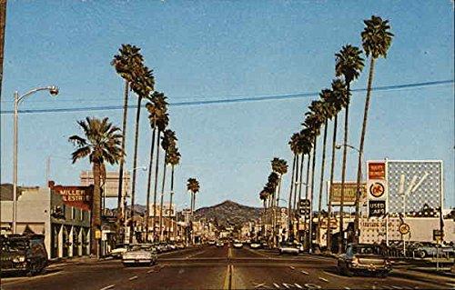 avocado-capitol-of-the-world-in-san-diego-county-escondido-california-original-vintage-postcard