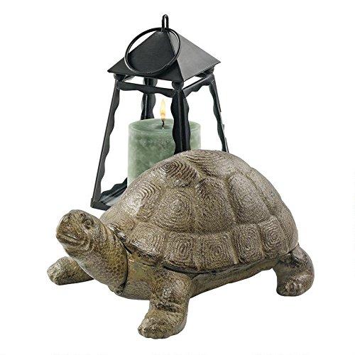 design-toscano-aesops-turtle-cast-iron-statue