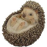 Hi-Line Gift Hedgehog on Back Statue