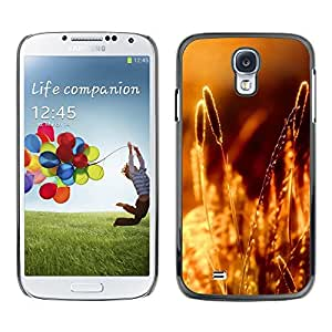 Licase Carcasa protectora - Sunset Beautiful Nature 89 - Samsung Galaxy S4