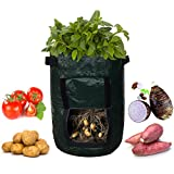 """HiHydro 2 Pack Eco-friendly Waterproof Pe Garden Potato Grow Bag Vegetables Planter with Access Flap for Harvesting 14"""" X 18"""""""