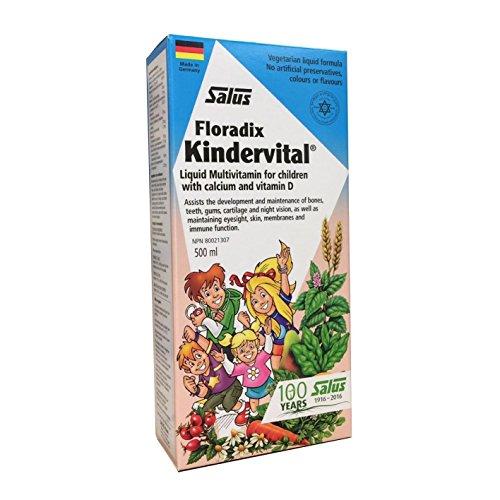 Floradix Kindervital Original Formula Childrens Liquid Multivitamin (Childrens Multivitamin Formula)