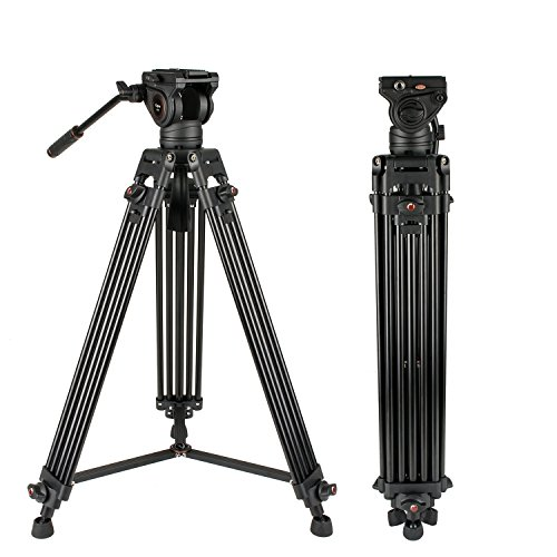 Heavy Duty Video Tripod, Cayer 64 Inch BV30-Camcorder Tripod System Aluminum Leg, K3 Fluid Head, Mid-Level Spreader, Max Loading 13.2 LB, DSLR Shooting, Plus 1 Bonus Quick Release Plate, Carrying ()